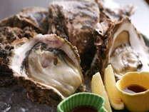 夏の逸品といえば岩牡蠣です!紀伊長島の豊かな海で育った濃厚な岩牡蠣は夏のオススメ食材です。