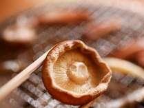 朝食:黴菌の原木しいたけ、ほくほく