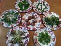 山菜料理4月山菜が採れる時期限定にて山菜のてんぷらをします。予約時要オーダー