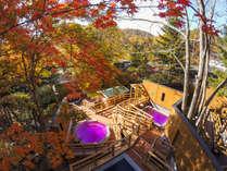 【森の散歩湯WOOD SPA】紅葉を愛でるひととき、涼風が心地良い秋。