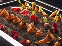 【夕食ブッフェ一例】道内各地の珍しい野菜もお楽しみ頂けます。