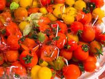 【夕食ブッフェ一例】新鮮野菜をたっぷりとお楽しみ下さい。