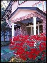秋には「ドウダンツツジ」が真っ赤になります。