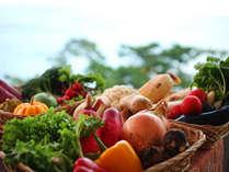 淡路島の四季の食材が集う四季彩ダイニング「浜房」