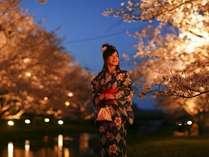 【温泉街近くの玉湯川の桜】見頃にはライトアップされゆかた姿でぜひ散策を♪例年の見頃は3月下旬~4月中旬