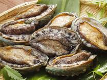 【彩り貝づくし会席】☆貝だらけの豪貝メニュー☆食べてみないカイ?