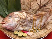 長寿・敬老のお祝いや大切な日に♪めで鯛お祝膳+8大特典でおもてなし
