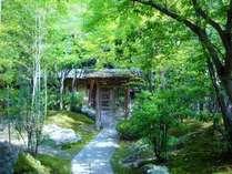 木々に囲まれた中、風情漂う佇まいのい食事処『三軒茶屋』