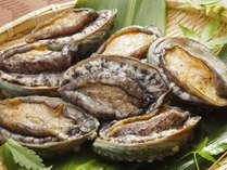 海の最高級食材!新鮮で肉厚な『アワビ』(一品追加料理)