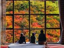【景観ベスト3】*秋*館内メインロビーから臨む紅葉!11月下旬~12月初めまでが見頃。