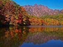 小さい秋 見つけた♪志賀の山々から見頃を迎え、すぐに里へと.. 色鮮やかな紅葉と味覚の季節に
