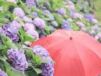 <じゃらん限定>雨が降ったらのんびり♪【雨の日限定特典】レイトアウト12時