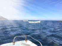 船釣り体験 特上会席≪壱岐の光≫その時期の最高食材で彩る料理の数々
