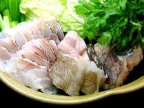 冬の限定の高級魚 クエの美味しさをたっぷりとお召しが来ください
