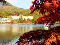 蓼科湖の紅葉。高原の辺り一帯が色鮮やかに染まります。近隣には蓼科の自然を楽しめるスポットがたくさん♪