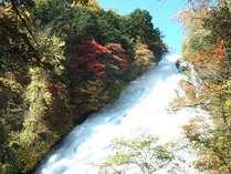 日光湯滝の秋!滝と紅葉の融合が楽しめるロケーション