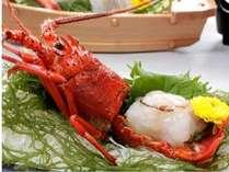 豪華で厳選食材の活け伊勢海老のお造りをおひとり様に1匹づつお付いたします。