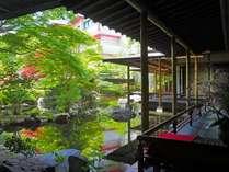 館内各所から様々な表情の日本庭園を眺められる。