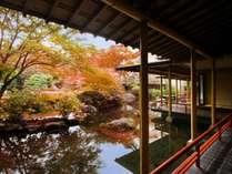 秋色に染まる庭園は一番人気!夜にはライトアップも・・・!(画像例年:11月上旬~11月中旬)