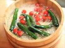 【田舎の朝食ビュッフェ】夏限定!彩冬農園で収穫されたお野菜をみなさまへ