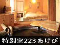 【温泉付特別室】223 あけび 内湯温泉付タイプの特別室です