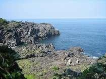 自然歴史案内人がガイドする「伊東湯の街コース」「城ヶ崎海岸コース」「一碧湖コース」