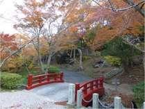 【紅葉】当館より車で30分 田原市の紅葉の名所「滝頭公園」があります