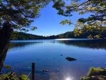 標高2100mにある神秘の湖・白駒池