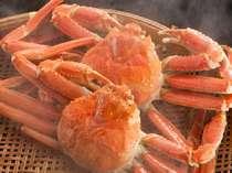 【旬の食旅】富山、秋冬のウマイ『蟹&白海老』両方が食べられる♪◆贅沢極みのよくばりプラン◆