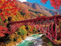 【10月中旬~】紅葉が見頃♪黒部峡谷トロッコ電車 少し羽を伸ばして6室の小宿へ 記念にマス寿司を♪