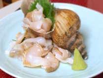 【1・2月限定】見事な大きさ!甘くてコリコリ~♪越中大バイ貝のお刺身!無料で1品付けちゃいます♪