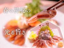 【旬な春旅◆ホタルイカ三昧】春しか食べられない!光る旨さに舌鼓♪たっぷり愉しめる3種の味わい♪
