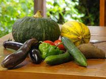 農家を兼業している当館がお出しするのは、新鮮で安全なお野菜です。