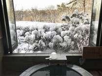 雪景色を見ながら温泉に入れます。