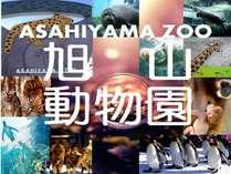 【入園券付】旭山動物園と雪の美術館をセットで楽しむ♪よくばりチケット付◎和洋バイキング朝食付◎