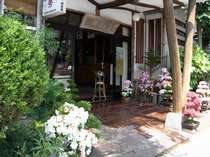 温海温泉 越後屋旅館