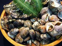*浜名湖の美味しいあさりを袋いっぱいにしてお持ち帰りください♪(※画像はイメージとなります)