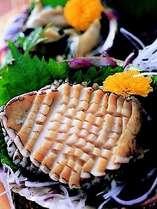 【お料理・通年】コリコリ食感がたまらない!アワビのお刺身。一例