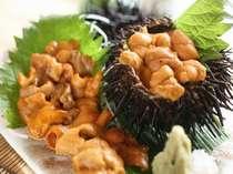 丹後のウニは、海藻を沢山食べて、臭みも一切ナシ。しっかりした身を味わって下さい。