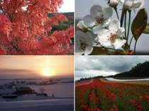(春)朝日山公園のエゾヤマザクラ(夏)ファーム富田のラベンダー園(秋)十勝岳の紅葉(冬)朝のサンピラー