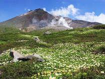 【じゃらん限定】山の日記念♪旭岳満喫&お部屋無料アップグレードでゆとり滞在!《1日3室限定》