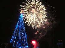 【12月24日★クリスマスファンタジア】特典付き!イブの夜空を彩る熱川花火大会プラン -海鮮膳-
