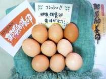 ブランド卵 那須御養卵 朝食でご用意