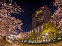 ~春~桜の名所に建つ帝国ホテル大阪