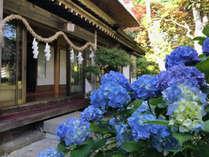 四季それぞれに表情を変える庭園。季節の移ろいを眺めながら寛ぐ安らぎの滞在をお楽しみ下さい。
