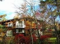 春の新緑から晩秋の紅葉まで景色が楽しめるマリンスノー