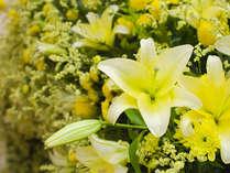 【ゆり祭】日本最多となる約300品種のハウステンボスゆり祭
