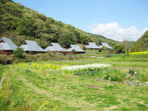 里山の自然学校 紀泉わいわい村 (大阪府)