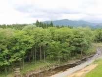 和室からの風景【小川の見える山側】四季折々の顔をのぞかせます。