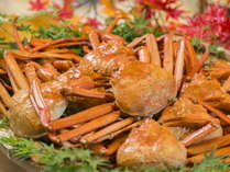 【男鹿直送 紅ズワイガニ】~2018年5月まで食べ放題!冬はアツアツの焼き蟹をお楽しみください!!